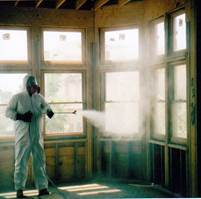Toxic Mold Inspections Remediation Spray Treatments For