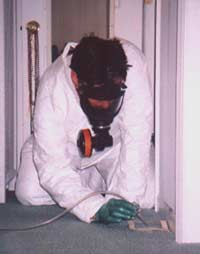We are taking a Carpet Cartridge Air O Cell  test to test for Black Toxic Mold Contamination on the carpet.